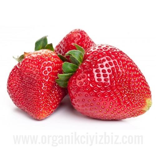 Erdbeeren Schale 250g, Kl. 1