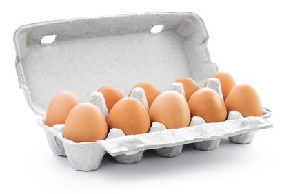 Eier Freiland 10er Pack